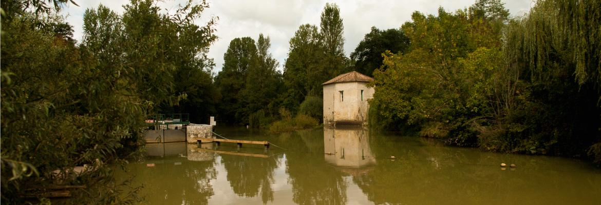 In nature the Charente in boat without license on canal boating holidays